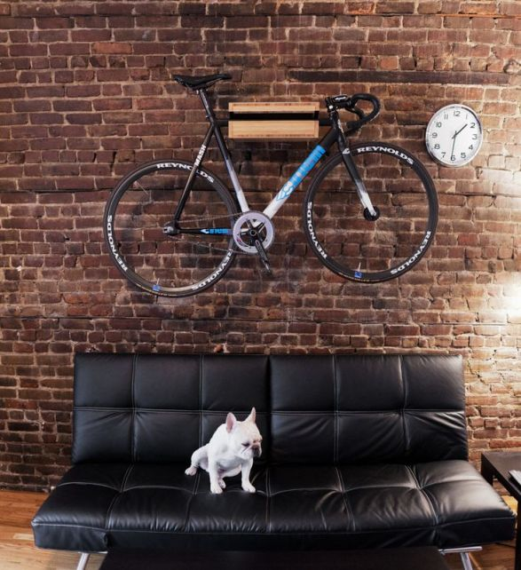 bici+cane 2