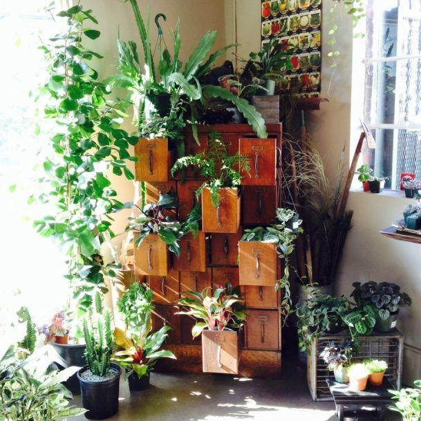 cassettone per piante