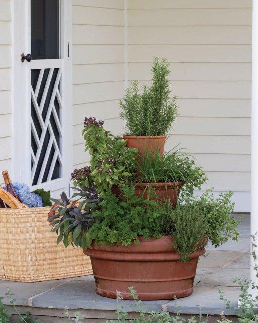 Il post lo scegliete voi l orto in balcone casa al 21 for Vasi terracotta usati
